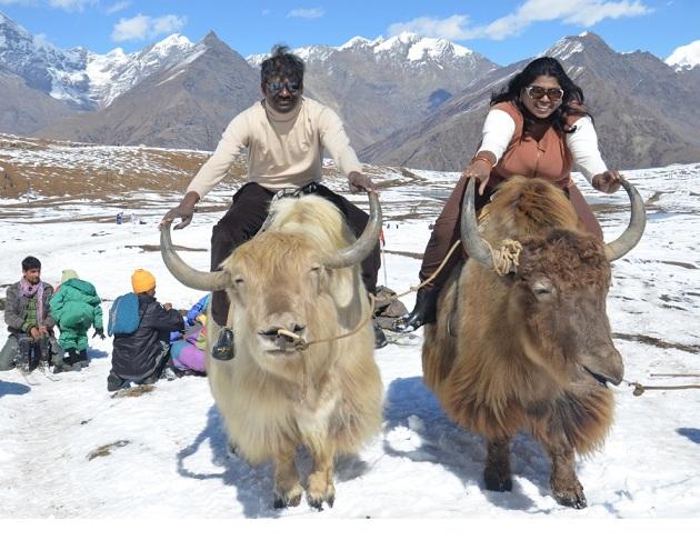 Shimla -Kasauli Tour