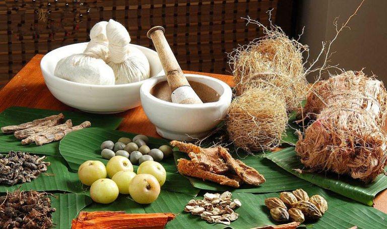 Kerala Spa & Ayurveda Tour