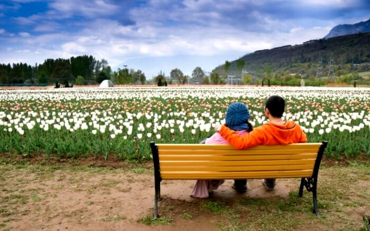 Kashmir -Honeymoon Packages